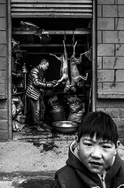 http://yangdaphoto.com/files/gimgs/21_9_v2.jpg